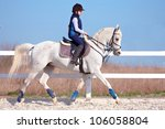 The Horsewoman On A White Arab...
