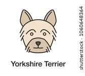 yorkshire terrier color icon.... | Shutterstock .eps vector #1060648364
