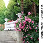 Stock photo beautiful park with blooming roses 106086545