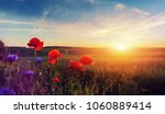 wonderful landscape during... | Shutterstock . vector #1060889414