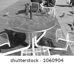 pigeons on a table on the... | Shutterstock . vector #1060904