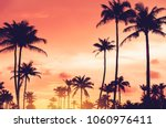 tropical palm tree with... | Shutterstock . vector #1060976411