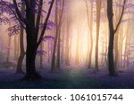 fairy tale purple fog and...