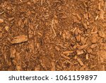 the piece of tree cut for... | Shutterstock . vector #1061159897