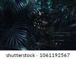 dark blue exotic fantastic... | Shutterstock . vector #1061192567