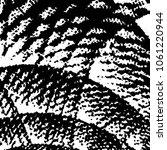 abstract grunge grid stripe... | Shutterstock . vector #1061220944