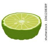 bergamot cartoon vector. free... | Shutterstock .eps vector #1061238389