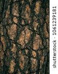 the art of crack tree cut... | Shutterstock . vector #1061239181