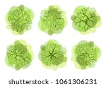 trees top view for landscape... | Shutterstock .eps vector #1061306231