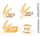 rice   wheat   barley and oat... | Shutterstock .eps vector #1061329727