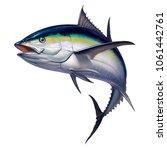 black fin tuna. Realistic isolated illustration.