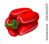 red pepper vegetable. realistic ... | Shutterstock . vector #1061461019