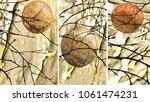 collection of designer oil... | Shutterstock . vector #1061474231