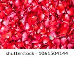 Stock photo rose petals background 1061504144