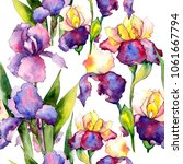 colorful irises. floral... | Shutterstock . vector #1061667794