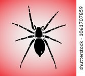 Black Spider On A White Red...
