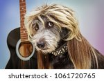 funny punk rock dog with guitar ... | Shutterstock . vector #1061720765