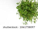 fresh thyme herb grow in vase....   Shutterstock . vector #1061758097