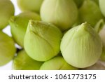 lotus flower is a flower that... | Shutterstock . vector #1061773175