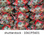 Fresh Crab in the market - stock photo