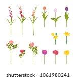 flowers in blossom set.... | Shutterstock .eps vector #1061980241