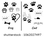 animals footprint foot feet... | Shutterstock .eps vector #1062027497