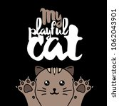 dark brown cat. lettering with... | Shutterstock .eps vector #1062043901