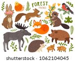 vector set of cute forest... | Shutterstock .eps vector #1062104045