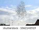 spring arrives and flocks of... | Shutterstock . vector #1062143519