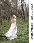 beautiful bride walking in... | Shutterstock . vector #1062177065