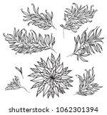 flower and leaf vector | Shutterstock .eps vector #1062301394