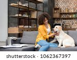 Stock photo beautiful young woman working at home and petting her dog 1062367397