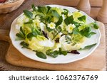 spring salad with primula... | Shutterstock . vector #1062376769
