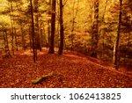 beautiful vintage autumn... | Shutterstock . vector #1062413825