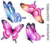 beautiful pink butterflies ... | Shutterstock . vector #1062478001