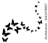 black butterfly  isolated on a... | Shutterstock . vector #1062478007