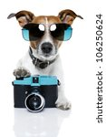Stock photo dog taking pictures with a fancy photo camera 106250624