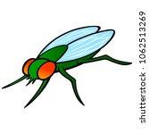 housefly   a vector cartoon... | Shutterstock .eps vector #1062513269