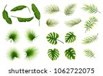 set of tropical leaves plants... | Shutterstock .eps vector #1062722075