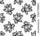 seamless pattern of hand drawn... | Shutterstock .eps vector #1062738881
