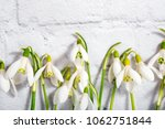 spring snowdrop flowers on... | Shutterstock . vector #1062751844