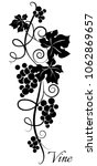 black and white grapevine... | Shutterstock .eps vector #1062869657
