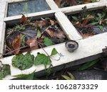 old white door lies in the... | Shutterstock . vector #1062873329