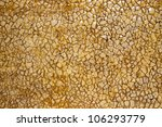 The Texture Of The Eggshell