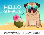 Stock vector pug dog wearing reflective sunglasses on a sandy beach ocean in background green coconut drink 1062938081
