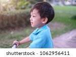 soft focus and closeup at asian ... | Shutterstock . vector #1062956411