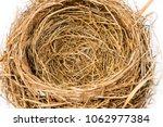 horizontal close up shot of an... | Shutterstock . vector #1062977384