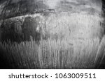 texture repetition of elements... | Shutterstock . vector #1063009511