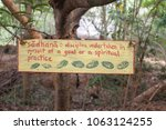 Small photo of sadhana sign in the forest