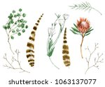 set of watrcolor feathers ... | Shutterstock . vector #1063137077